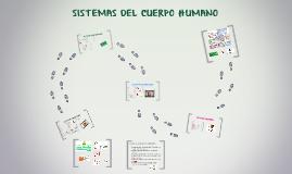Copy of SISTEMAS DEL CUERPO HUMANO