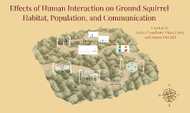 Effects of Human Interaction on Ground Squirrel Habitat and
