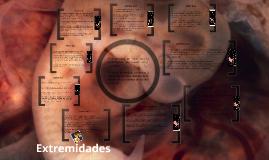 Copy of Desarrollo embrionario en humanos