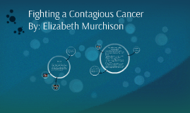 Fighting a Contagious Cancer