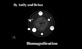 Biomagnification