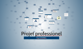 Projet professionel