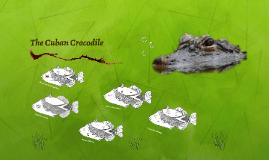The Cuban Crocodile