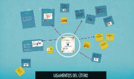 Copy of LIGAMENTOS DEL ÚTERO