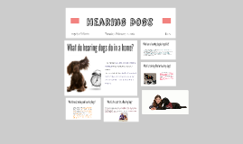 Hearing Dogs Times