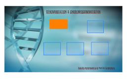 Genommutation und Chromossommutation