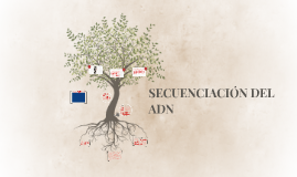 SECUENSACION DEL ADN