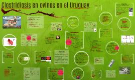 Clostridiosis en ovinos en el Uruguay.