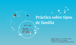 Práctica sobre tipos de familia