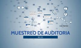 MUESTREO DE AUDITORIA - NIA 530
