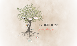 EVOLUTION!!