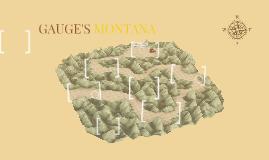 GAUGE'S MONTANA