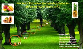 Produce y distribuye conversar de frutas tropicales y exotic