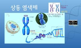 19.3-4-06. 상동염색체