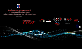 Seminarium II_materialy i metody