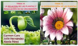Copy of PRESENTACIÓN BIOLOGÍA