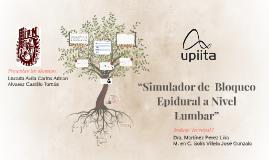 """""""Simulador de  Bloqueo Epidural a Nivel Lumbar"""""""