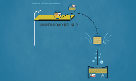 UNIVERSIDAD DEL SUR