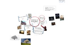 Copy of Symbols and Symbolism