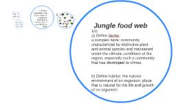 Jungle food web Santiago Ferreyros