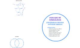 ANALISIS DE ARMADURAS