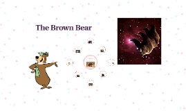 Copy of The Brown Bear
