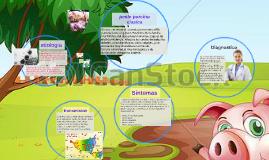 Copy of peste porcino clasica