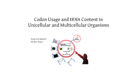 Codon Usage and tRNA Content in Unicellularand Multicellular Organisms