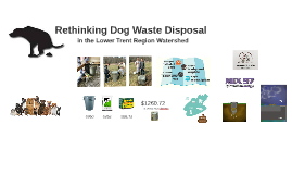 Rethinking Dog Waste