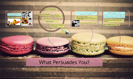 What Persuades you