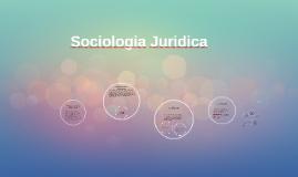 El derecho en la vida social