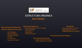 Estructura orgánica UPC
