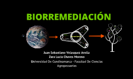 Copy of biorremediacion