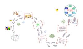 Sistema de Gestión Ambiental Toxement