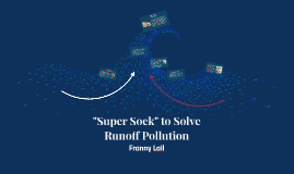 """Super Sock"" to Solve Runoff Pollution"
