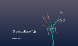Unit 2: Organization of Life