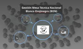 Gestion Mesa Tecnica Nacional Blanco Orejinegro (BON)