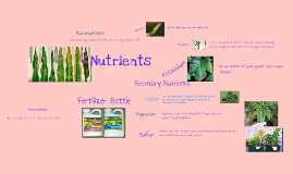 Copy of Plant Nutrients