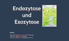 Endozytose und Exozytose