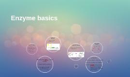 Enzyme basics