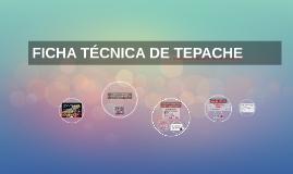 Copy of FICHA TECNICA DE TEPACHE