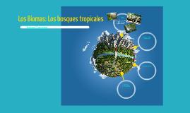 Los Biomas: Los bosques tropicales