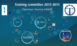 training committee report