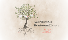 Awareness On Heartworm Disease