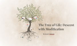 The Tree of Life: Descent with Modification