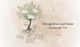 Bilingualism and Home Language Use