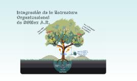 Estructura Organizacional 2015
