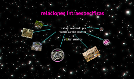 Copy of relaciones itra e iterespecificas