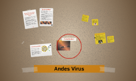 Andes Virus