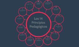 14 Principios Pedagógicos